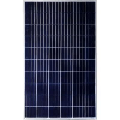 Panel Solar Amerisolar 340W Policristalino 72 células